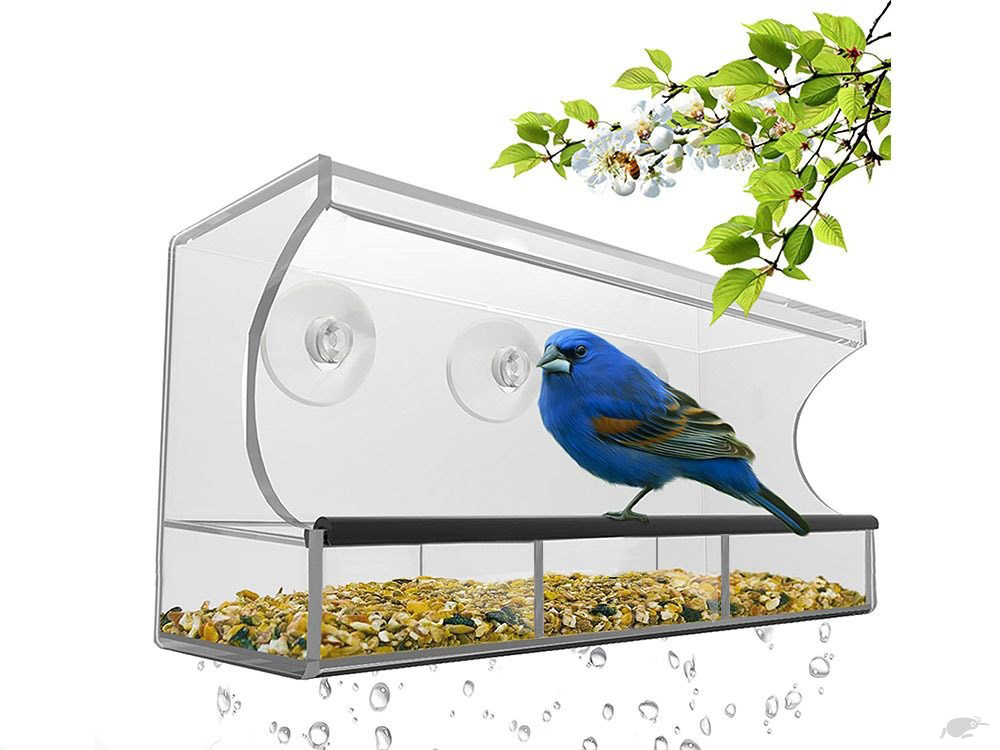 pole with clear make acrylic bird decor natural rubbed for bronze own tall garden feeder idea oil feeders best your